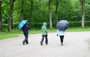 pedestrians with umbrellas in the park