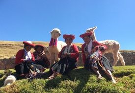 people in national costumes near the llama