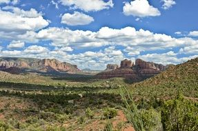 Cathedral Rock of Sedona