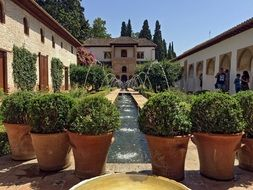 beautiful garden in granada