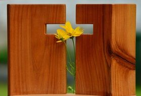 yellow flowers in Cross form hole in wooden panel