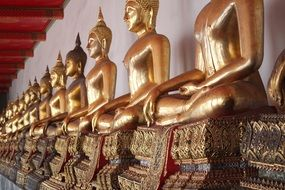 flat row of golden buddhas in bangkok temple