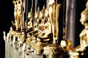 gold Buddha fugures in Bangkok