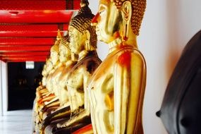 row of golden buddhas near the wall in the temple