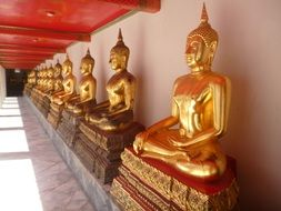 golden Buddha statues in Temple, Thailand, bangkok