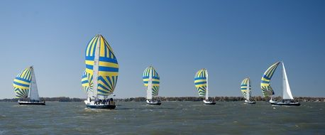 striped sailboats at ocean competitions