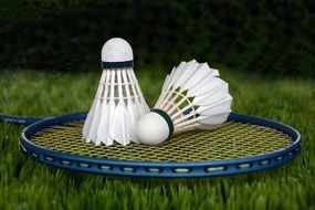 racket for badminton on green grass