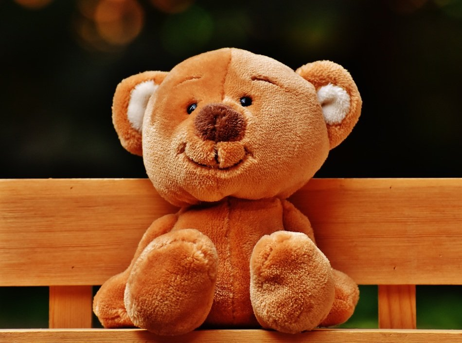 brown teddy bear on a bench close up