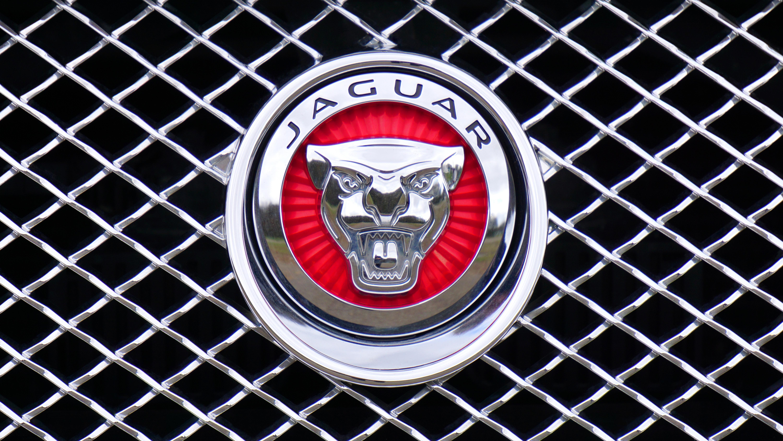 Jaguar Logo Emblem Car Design Free Image