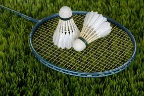 all for badminton on green grass