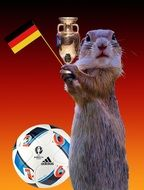 Suricata with the flag of Germany next to the ball