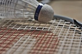 badminton is a recreational sport