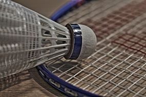 badminton as a sport
