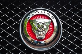 photo of luxury jaguar auto icon