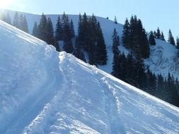 deep ski tracks in the snow