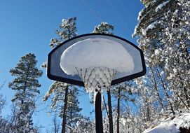 basketball net in the snow
