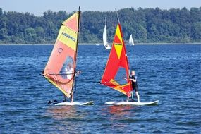 windsurfing as a water sport