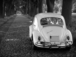 retro vw beetle in black and white