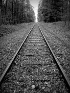 Black and white photo of Gleise Track