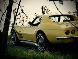yellow Corvette C3