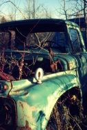 old rusty car in the thicket