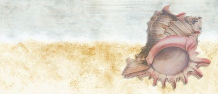 banner with a image of a large seashell