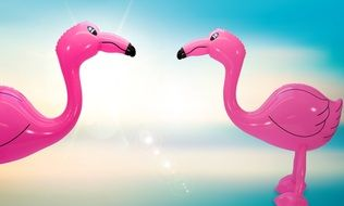 Picture of the Flamingoes balloons