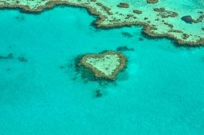 landscape of heart shaped coral reef in Australia