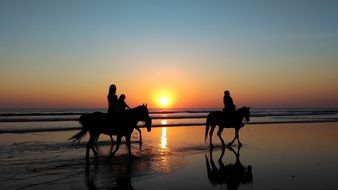 Picture of the people riding on a horses on a beach at the sunset