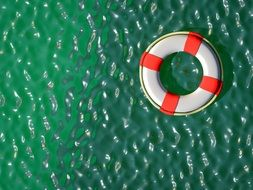 lifebuoy on green water