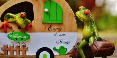 funny frogs in caravan