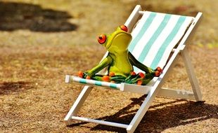 green frog on a striped deck chair