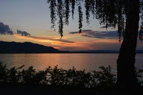 view from the shore to the lake Zurich at sunset