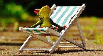 frog is resting on a sun lounger