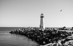 black and white photo of the lighthouse on the rocky coast