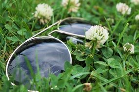 sunglasses lie on a green clover