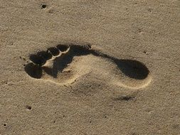 female footprint on wet sand at the beach