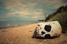 skull on a sandy beach close-up