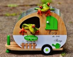 green frogs in a travel trolley