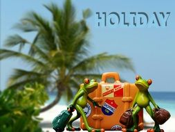 frogs ready for holidays