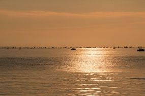 golden sunset on lake constance