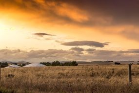 farm field with dry grass at sunset