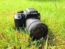camera on green grass on a sunny day