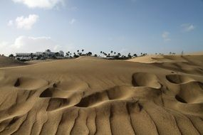 picturesque sand dunes in the canary islands