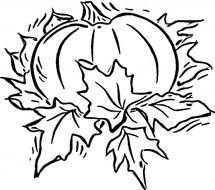 pumpkin in leaves as a graphic image