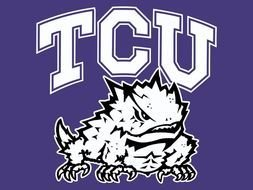 TCU Horned Frogs drawing