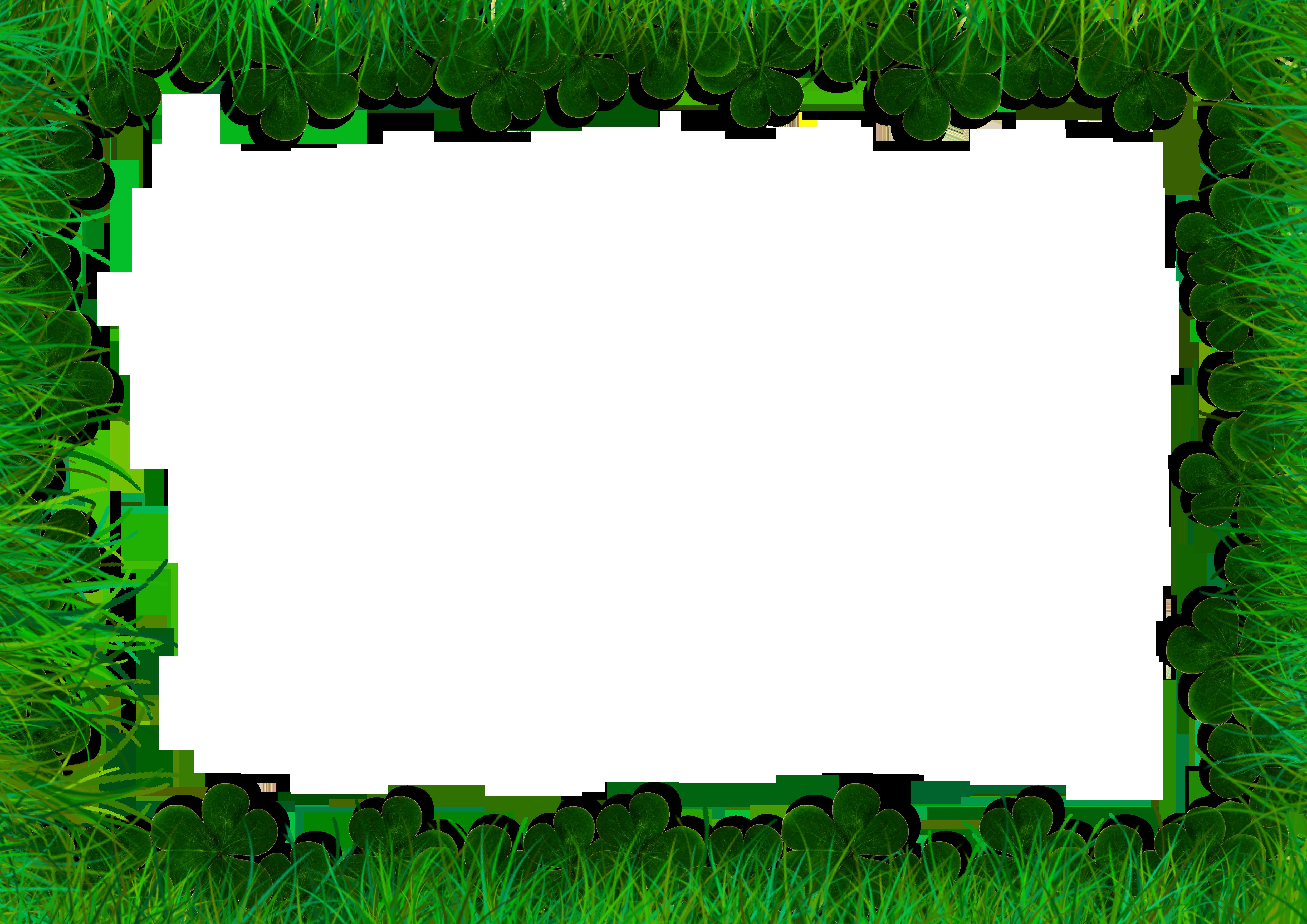 green tree gallery frames