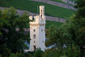 mouse tower bingen historically places
