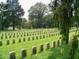 green field with gravestones