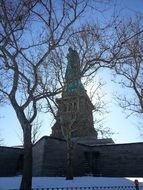 behind a tree is a statue of liberty in new york